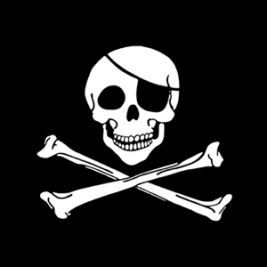 Classic Jolly Roger - Ladies Pirate Shirt
